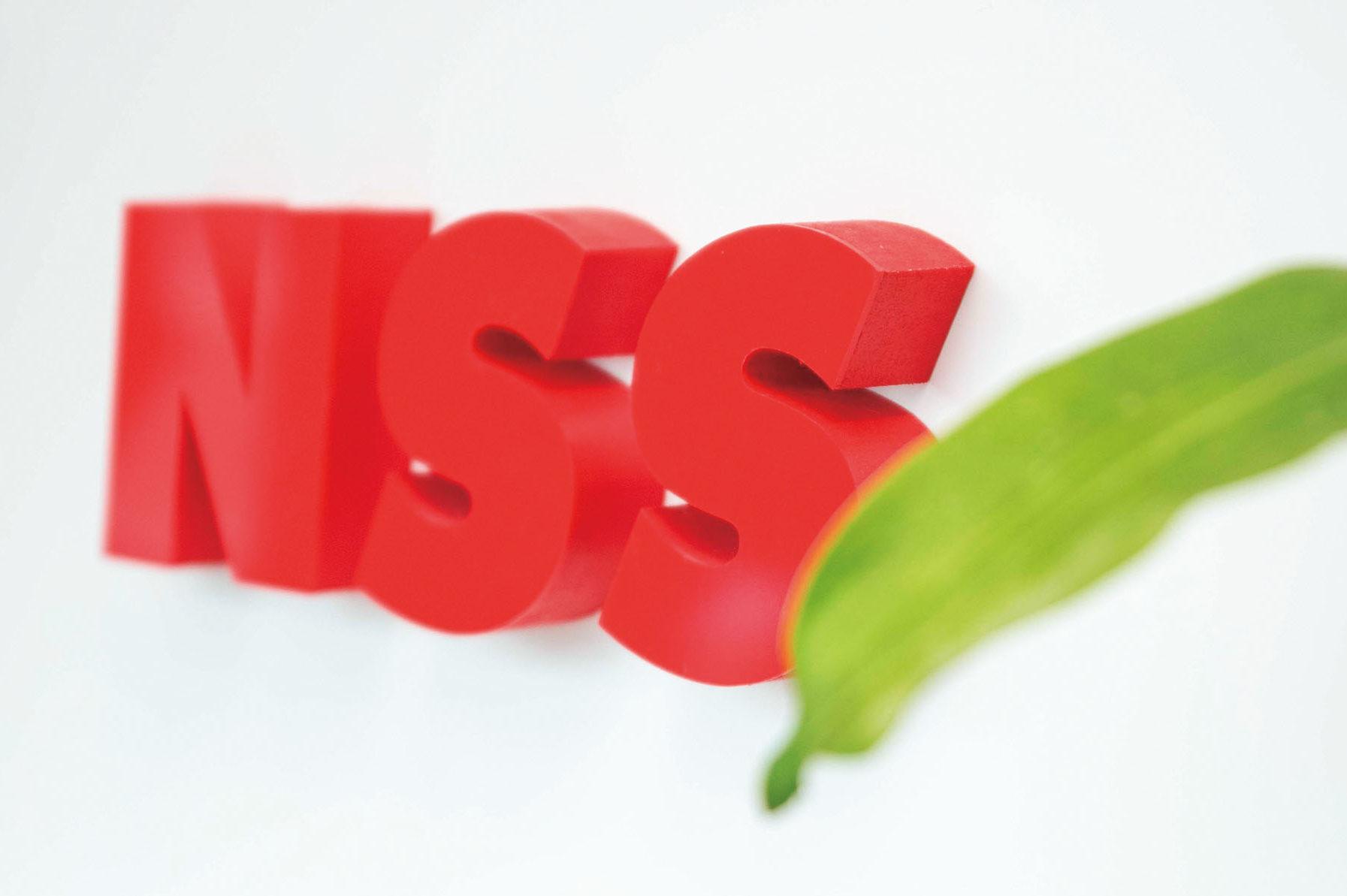 株式会社 NSS